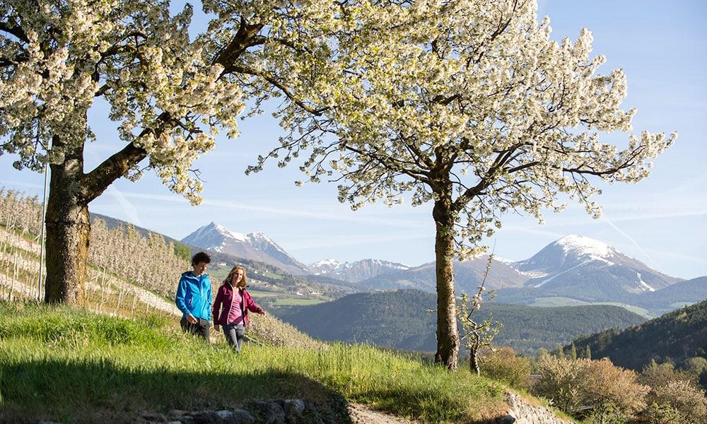urlaub-brixen-fruehling